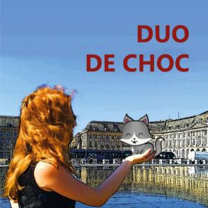 La premier de couverture de Duo de choc le roman
